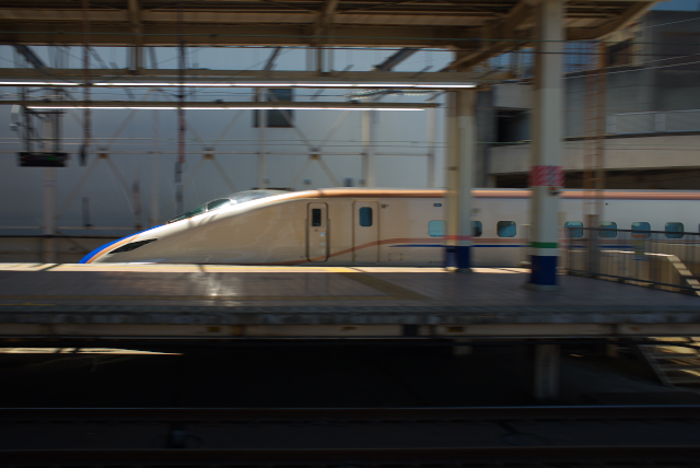 DSC_7294.jpg