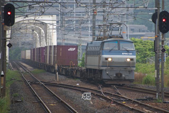 DSC_7953.jpg