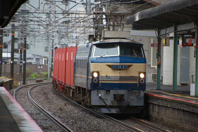 DSC_7976.jpg