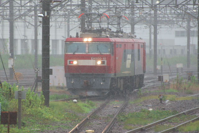 DSC_8799.jpg