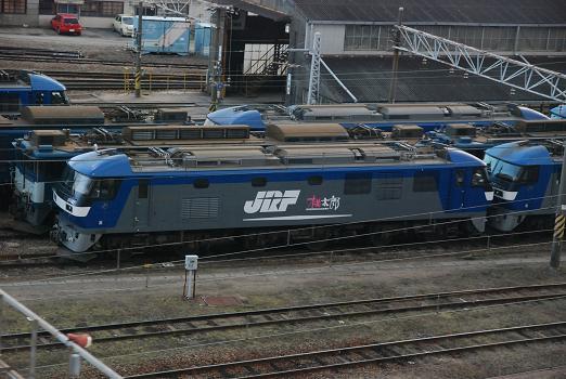 DSC_9826.JPG