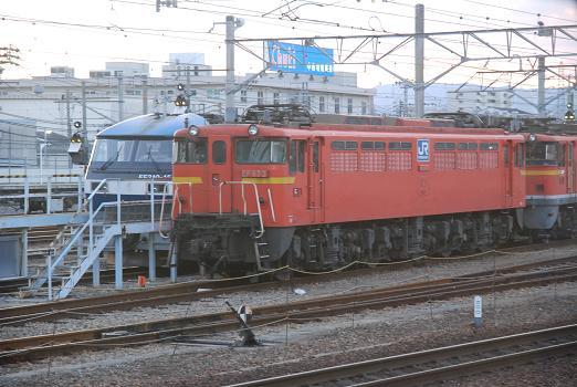 DSC_9830.JPG