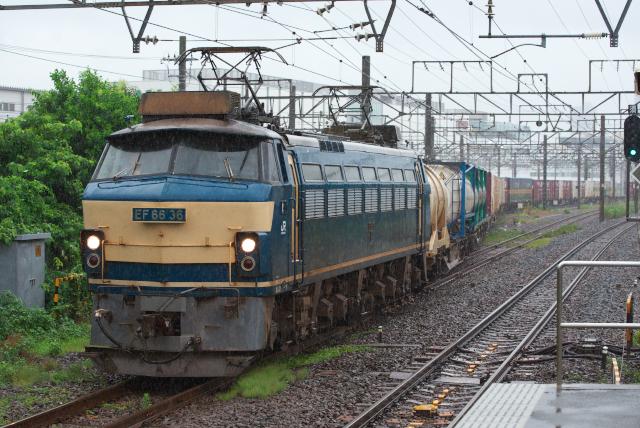 DSC_8876.jpg